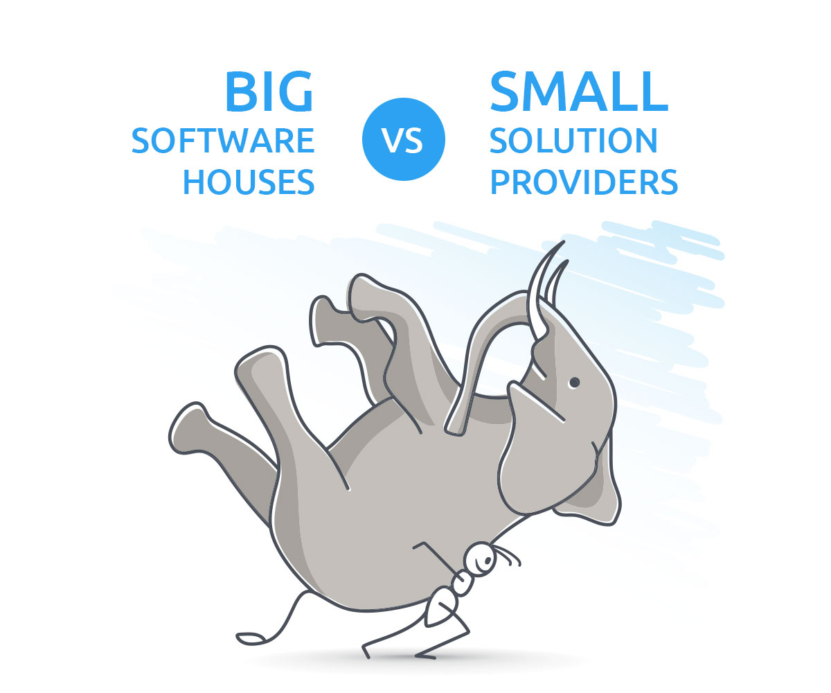 Software house VS Solution provider